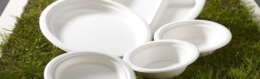 Disposables Plates | Galgorm Group Catering Equipment and Supplies